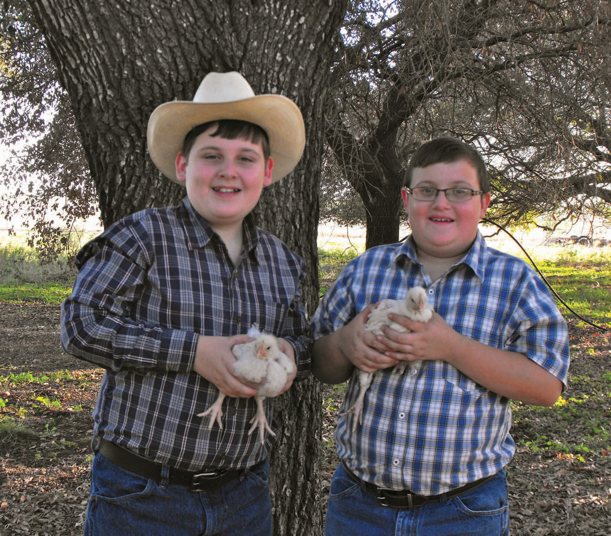 Luke and Seth Robertson of Charlotte proudly hold two of their 50 chickens. They will each be showing one pen, or three chickens at the Atascosa County Livestock Show. The show will be from January 17-21 at the Atascosa County Showbarn. Luke and Seth are the sons of Kenny and Leah Robertson. Luke is a homeschooled 6th grader and Seth is a 3rd grader in Charlotte Elementary. They are showing their chickens through Charlotte 4-H.