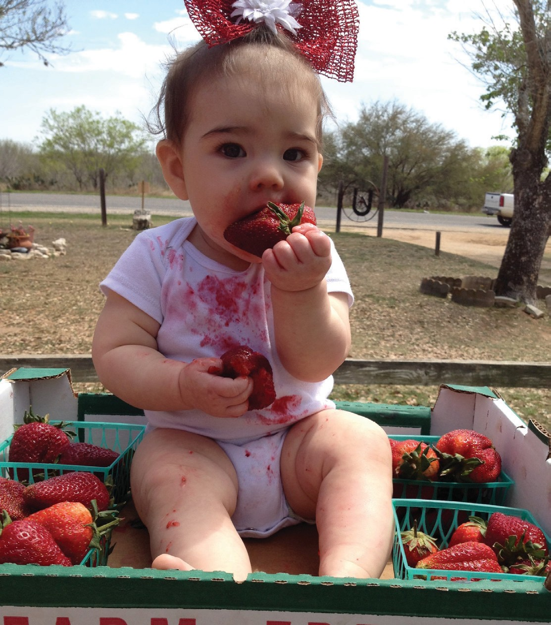 """With over 200 Facebook """"likes"""", Jimmy Martinez's entry of his daughter Bailey Rae Martinez won the Berry Picks photo contest. The win has earned him a pair of tickets to this weekend's Strawberry Festival."""