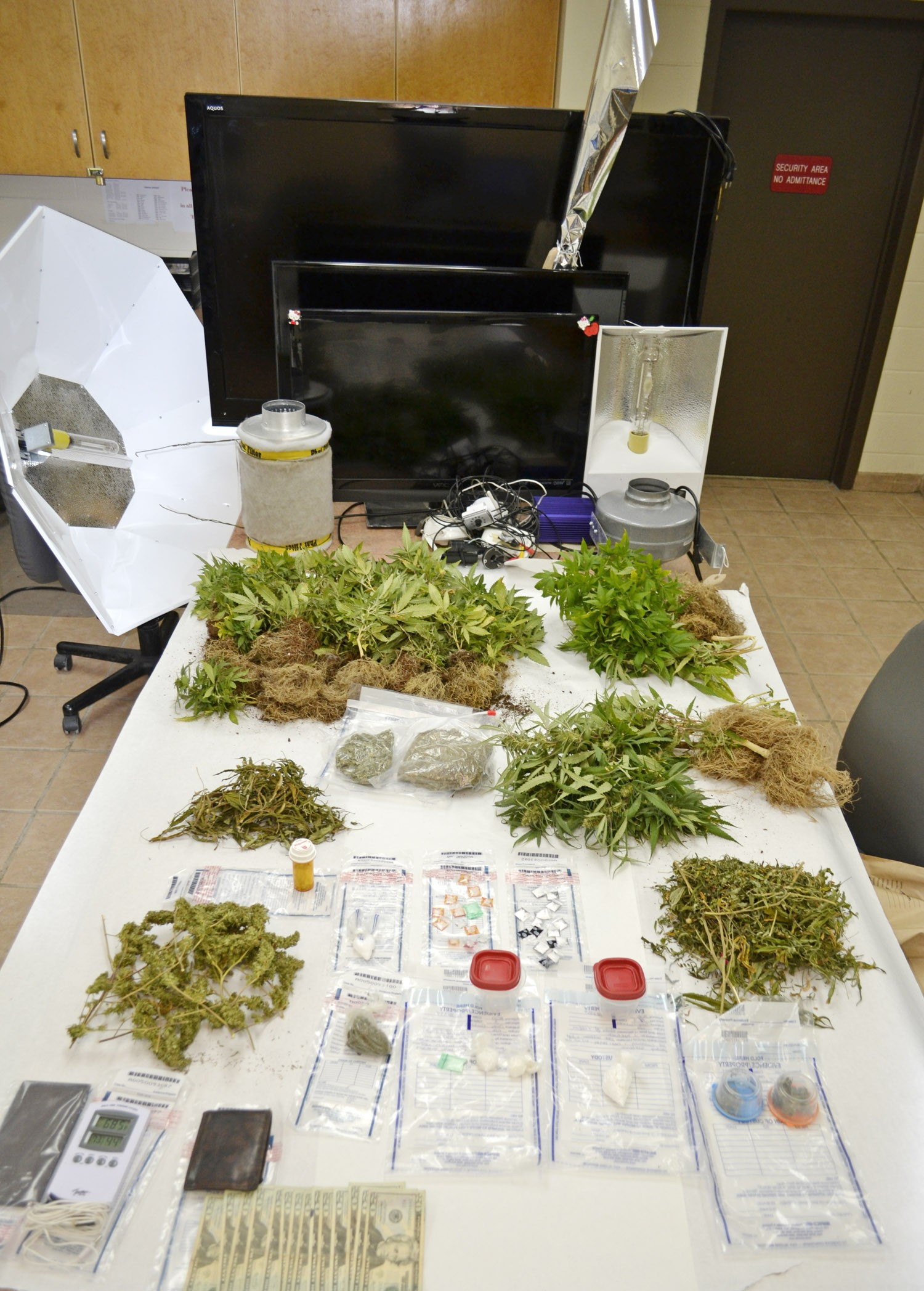 Atascosa County Sheriff's deputies were not expecting to find live marijuana plants, meth, cocaine and flat-screen T.V.s when they went to serve an arrest warrant on 25 year old Corey Contreras on Friday, April 11.