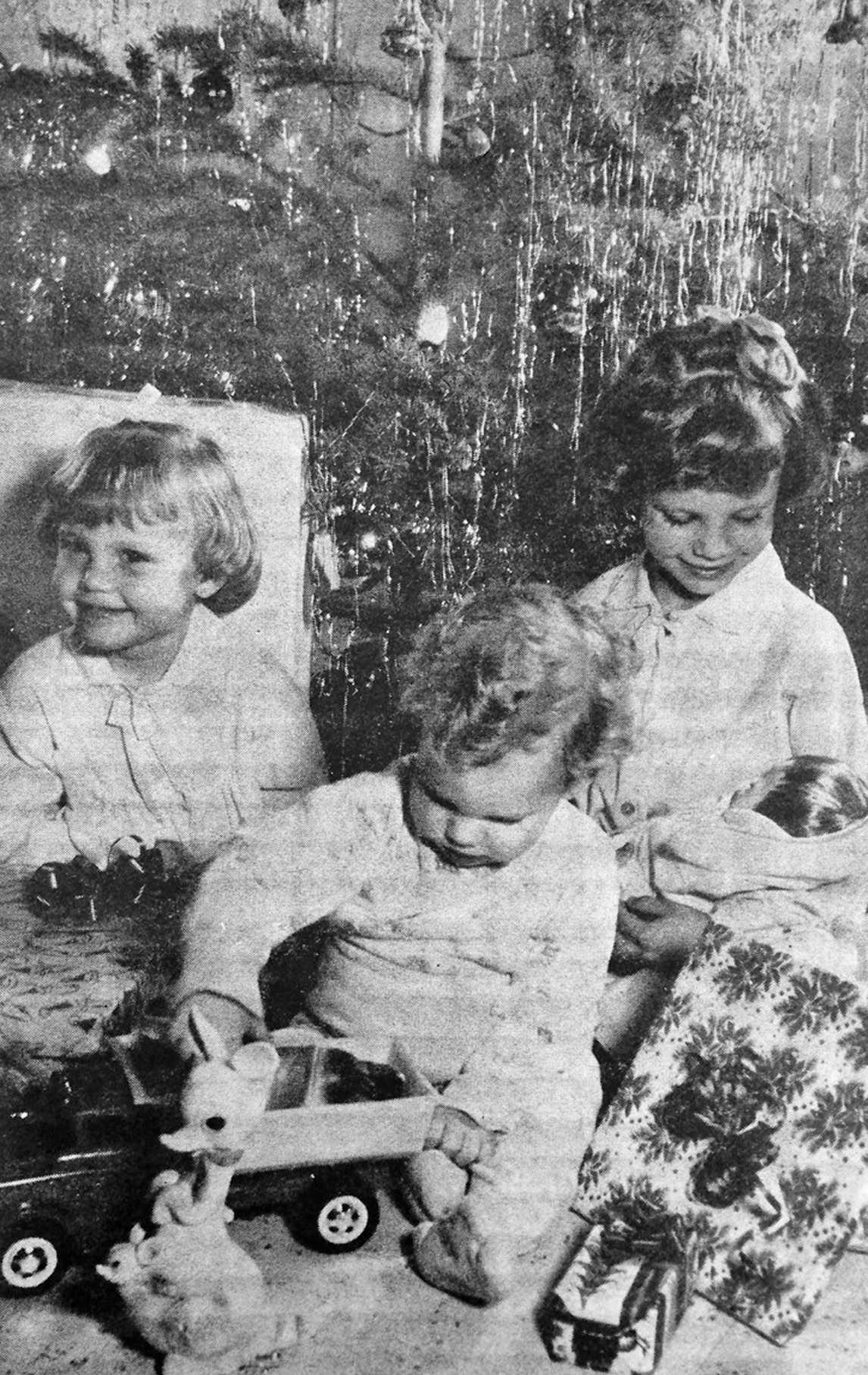 "CHRISTMAS IS FOR KIDS! - ""A truck!...a dolly!""...and many other exciting discoveries will be made by Atascosa county youngsters 'neath the tree on Christmas morning. Depicting such a scene, from left to right, are Laurie Ann, 3, Jeffrey, 1, and Carla, 6, children of Mr. and Mrs. Alfred Korus of Pleasanton. -Express photo originally ran in the December 23, 1964 edition of the Pleasanton Express."