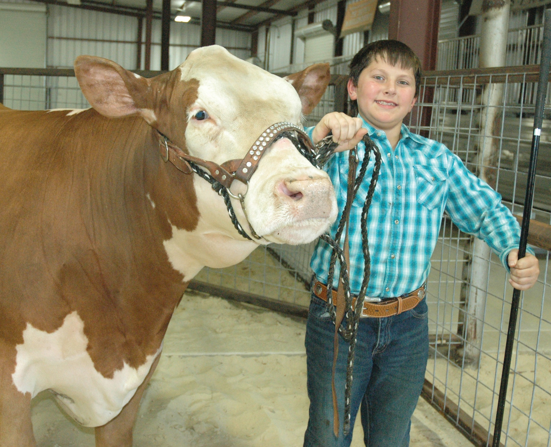 "Tate Turner, 8-year-old son of Jennifer and Chris Turner, has high hopes for his Hereford steer ""Bucky"" this weekend at the McMullen County Livestock Show. This will be his first time to compete. The auction begins at 2 p.m."