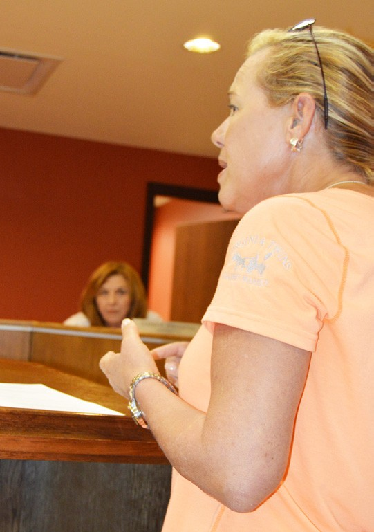 Catie Blaha, owner of Virginia Twins Garden Market, addressed the council about the recent crime wave.