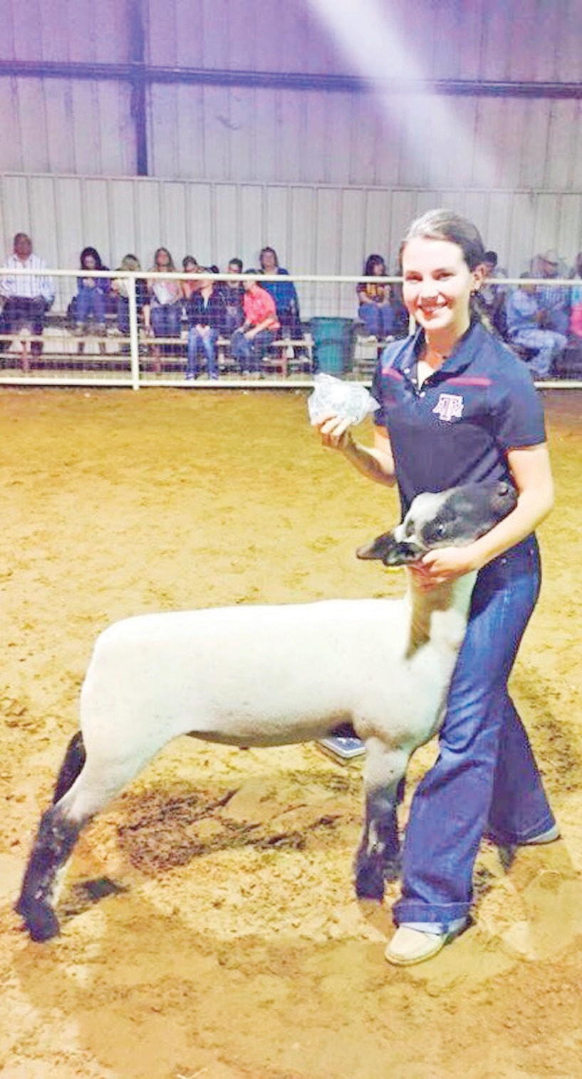 Jourdanton FFA Freshman, Serah Kate Blair recently participated in the Jourdanton FFA Chapter show where she won Senior Lamb Showmanship. Serah is the daughter of Julie and Trace Blair. This show allowed Serah to warm up for the 62nd Annual Atascosa County Livestock show which begins Monday, January 11th. A special section will be featured in the February 3 edition of the Pleasanton Express to wrap up the Atascosa and McMullen County stock shows. It will be a fun section filled with results and lots of photos! Please keep an eye out for the Pleasanton Express staff as they're out taking photos all week long and sharing posts on Facebook