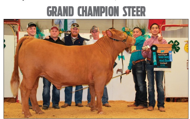 Ryan Morlock, Chris Morlock of Pursch Motors, Inc., Tim Swan and David Dove of Mac Haik Southway Ford (left to right) bought the Grand Champion Steer from Ruben Guzman at the 62nd Atascosa County Livestock Show auction. The Heavy Exotic sold for $8,500. Ruben is a member of Somerset