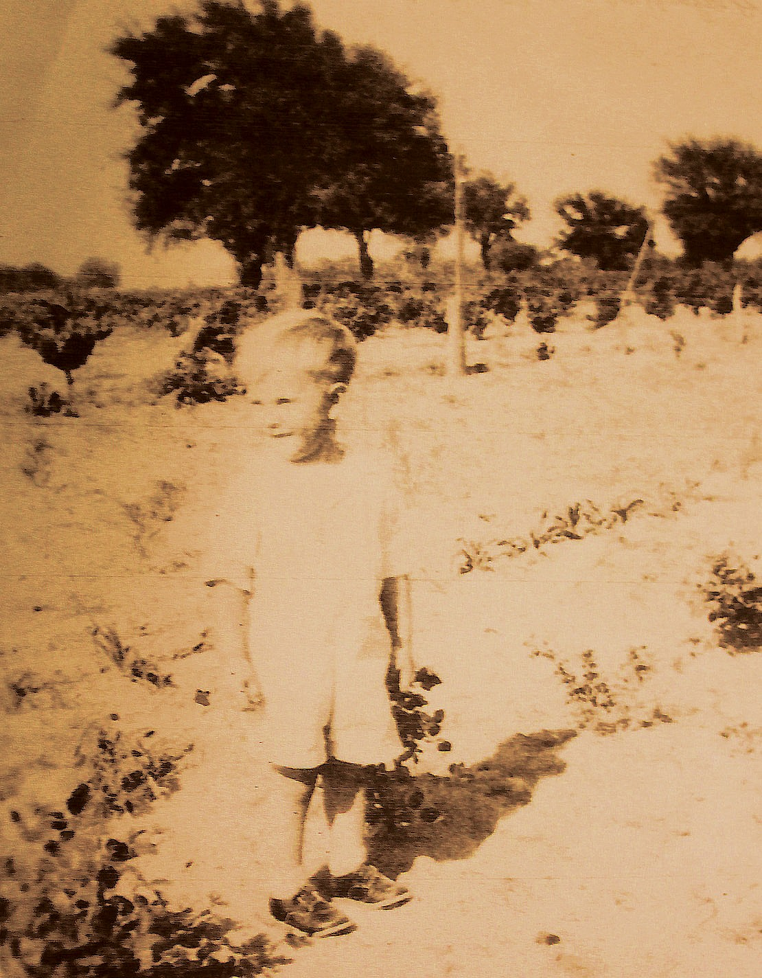 In 1938, at the age of 5, Norman Porter, in his grandmother Leona Brown's backyard. This was on U.S. 281, north of Pleasanton. In the background is a grape arbor on what is now Repka property.